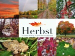 Herbst- Collage